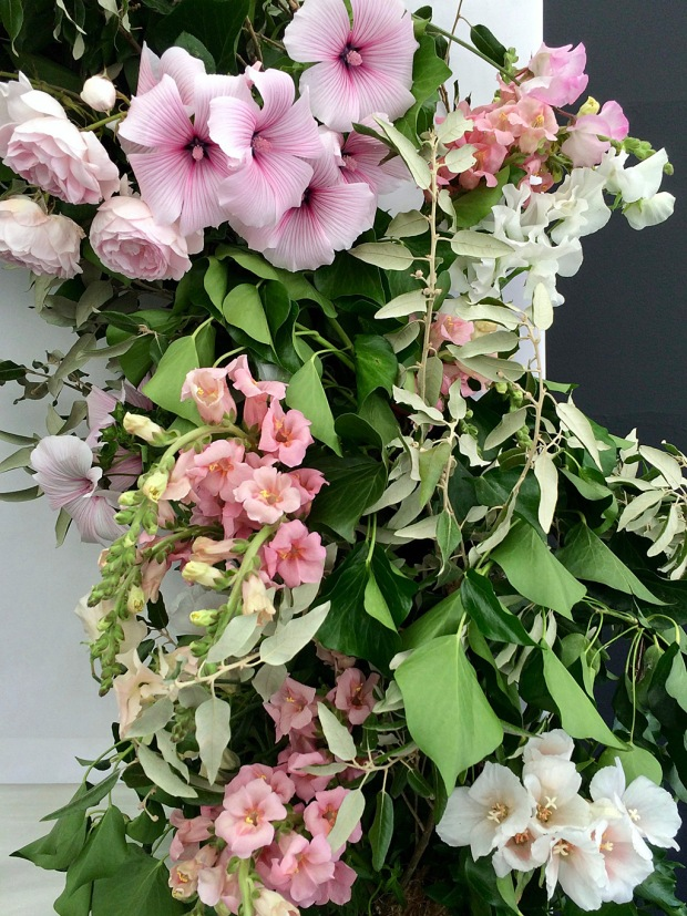 Roses, mallows, sweet peas, and antirrhinums with foliage