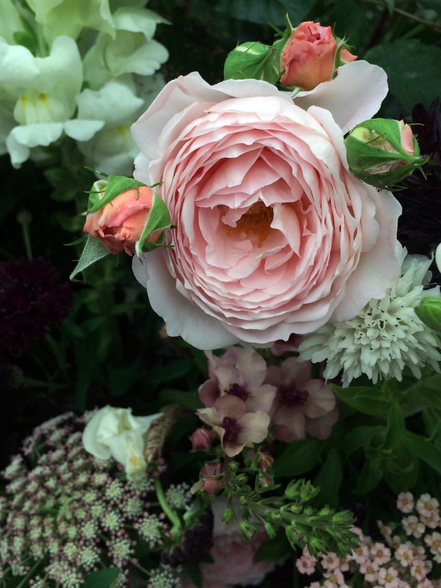 Rose with buds in a flower arrangement