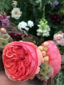Rose, berries and seed heads