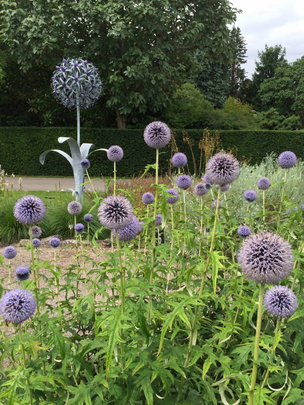 Sculpture of allium with echinops in the foreground
