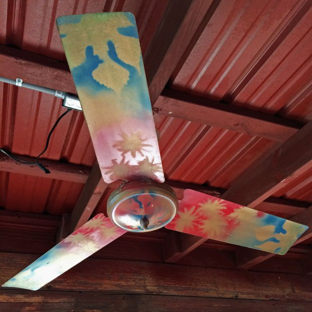Red corrugated roof with painted ceiling fan
