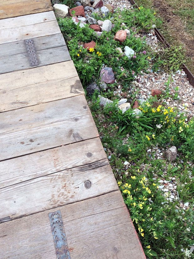 Reclaimed wooden boards form a path