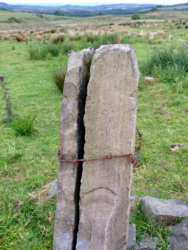 A stone post, cracked in two, tied together with barbed wire
