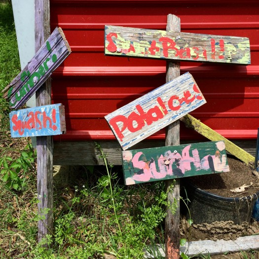 Wooden signs with faded names of vegetables and herbs