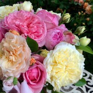 Posy of yellow, apricot and peach garden roses