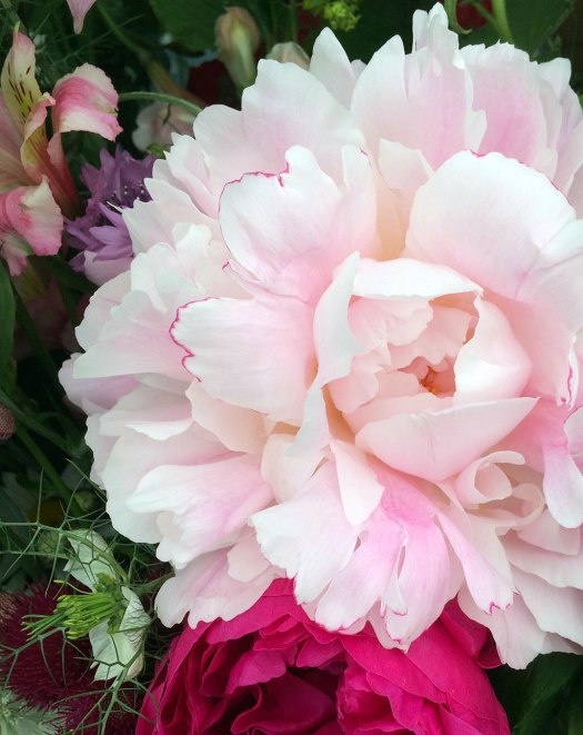Close up of a pink peony in a flower bouquet
