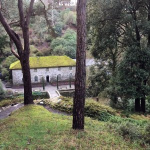 White building with moss covered roof viewed from a hillside above