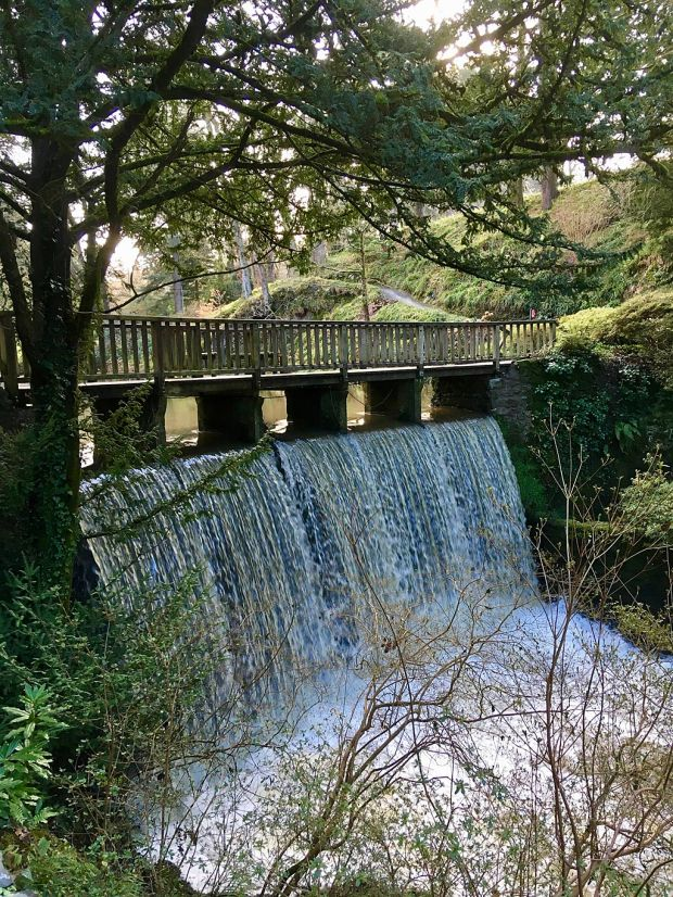 Waterfall crossed by a wooden bridge