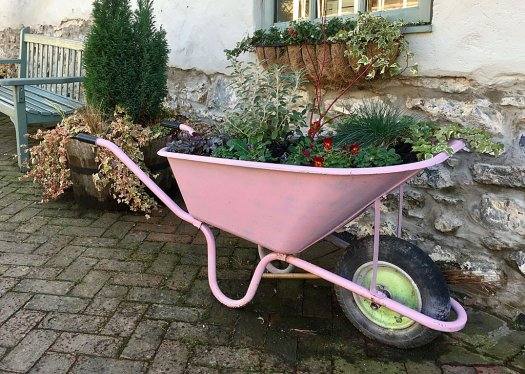 Pink wheelbarrow used as a flower planter
