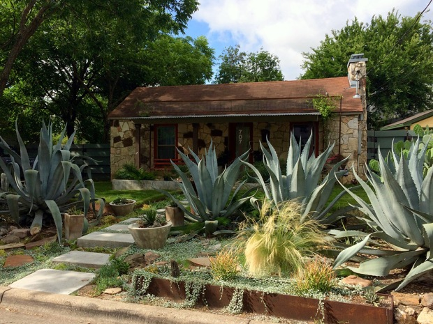A house with large succulents in the garden