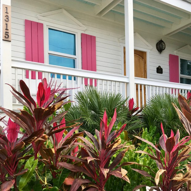 House with pink shutters and foliage plants