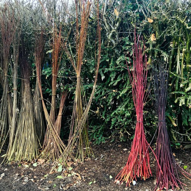 Brown, black and red coloured sticks