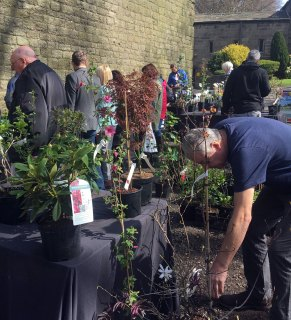 Visitors browse for plants at the Houghton Tower plant fair