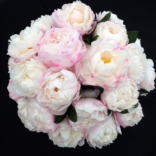 Ball shaped arrangement of white peonies