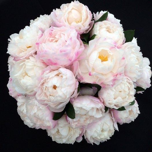 Ball shaped arrangement of white peonies