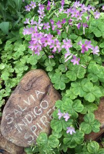 Stone plant label with flowering plant