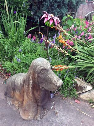 Stone Basset Hound beside a garden