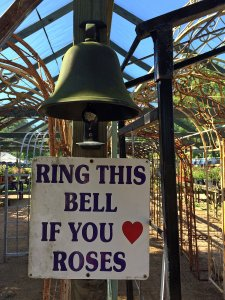 Sign: Ring this bell if you love roses