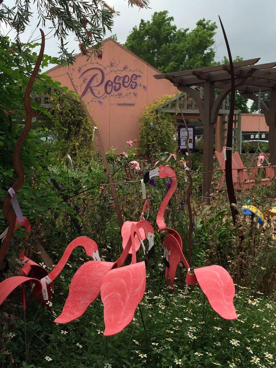 Pink metal flamingos at The Arbor Gate in Texas