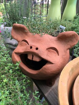 Pottery planter shaped like a smiling, toothy pig
