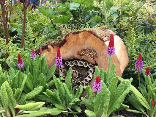 Insect hotel with primula vialii at RHS Chatsworth Flower Show