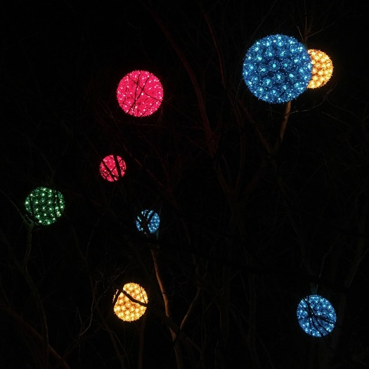 Orb shaped tree lights at night with silhouettes of branches