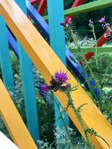 Yellow, turquoise, blue, green and red frames