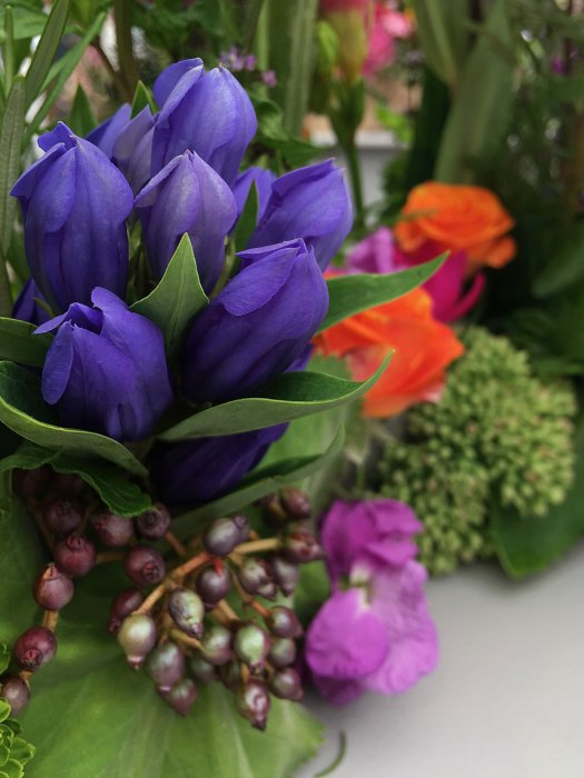 Gentiana Blue in a floral arrangement