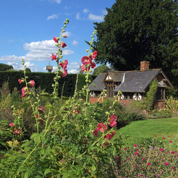 Hollyhocks seem to tower over a cottage at Arley Hall