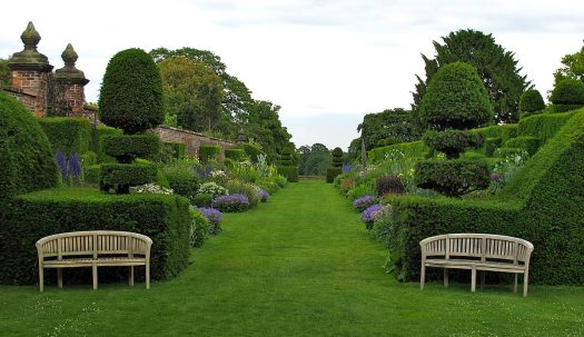 Arley Hall's wide double borders have a topiary structure