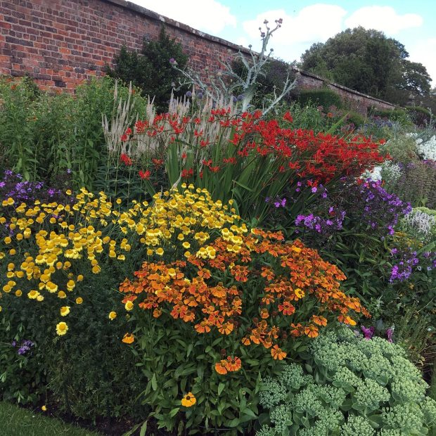 Helenium, phlox, crocosmia and sedum in Arley Hall's herbaceous border