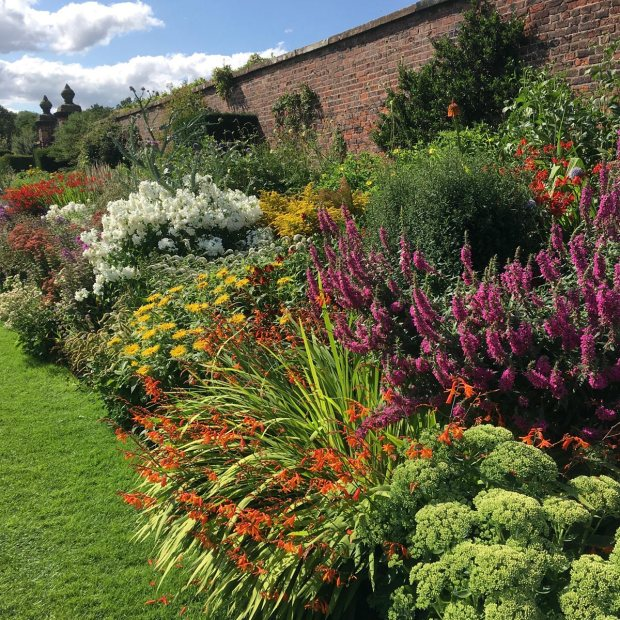 Border with clumps of brightly coloured perennials
