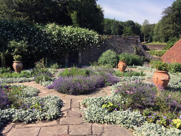 Hestercombe courtyard with pots, herbs and flowers