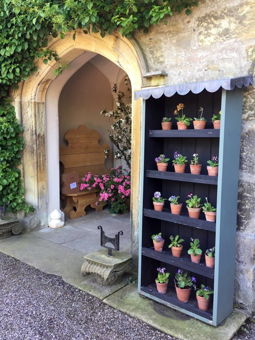 Gresgarth's entryway with auricula theatre