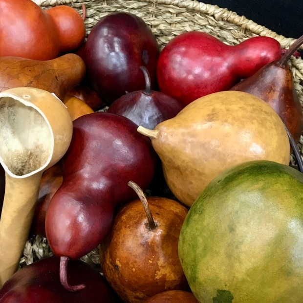 Small gourds with different colours and textures