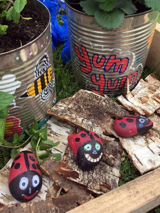Pebbles painted like ladybirds and recycled tin can plant pots