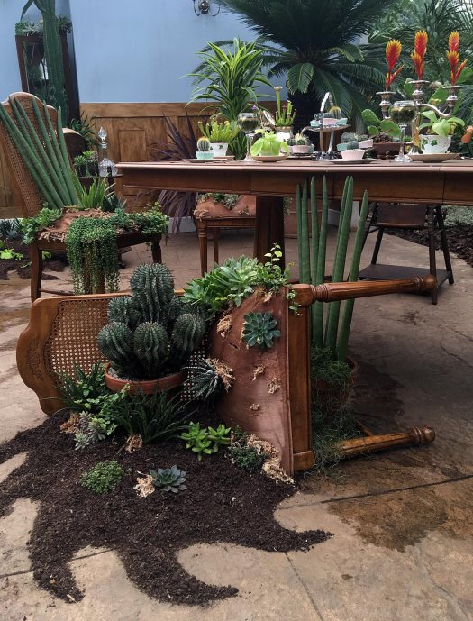 Upholstered chairs with plants growing from them