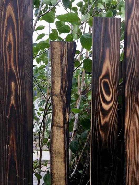 Gappy shou sugi ban fence