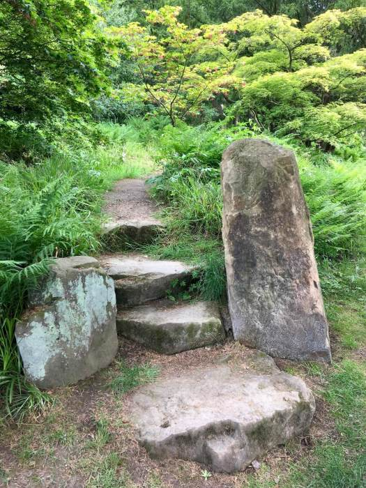 Standing stone with steps leading to woodland