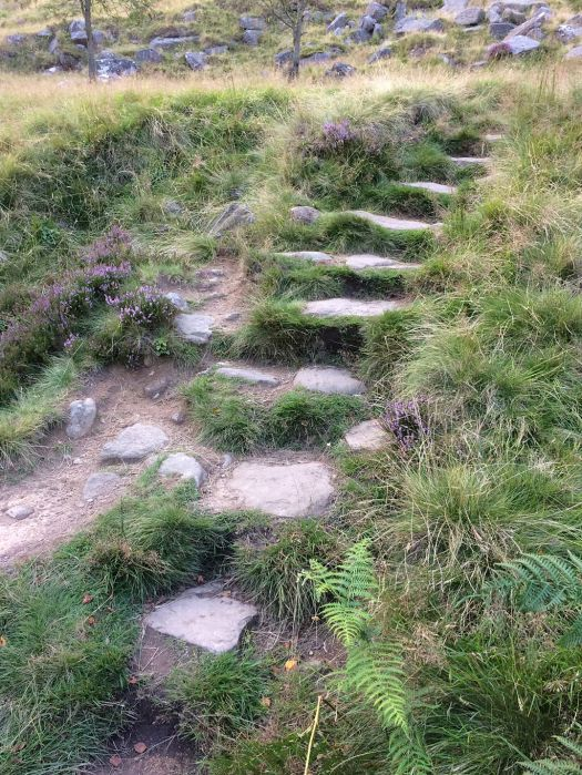 Stone steps on a hillside