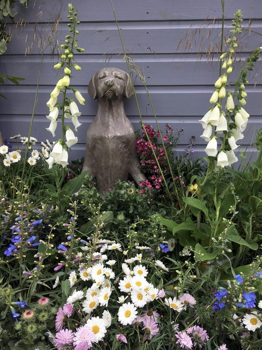Yogaing dog with flowers