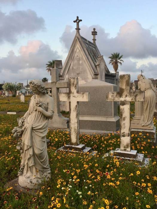 Evergreen cemetery Galveston