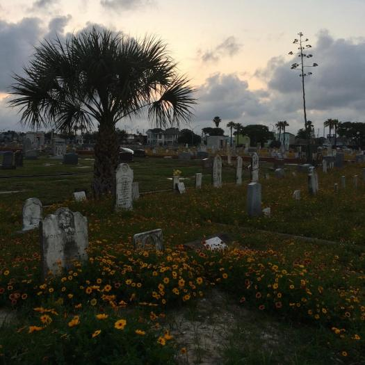 Galveston's Evergreen Cemetery at dusk