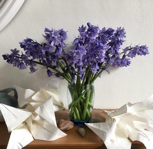 Vase of Spanish bluebells