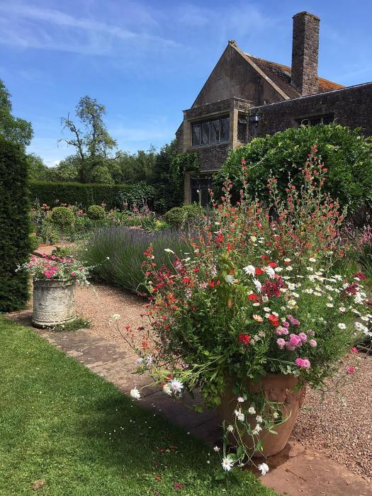 Pots overspilling with annual flowers at Cothay Manor