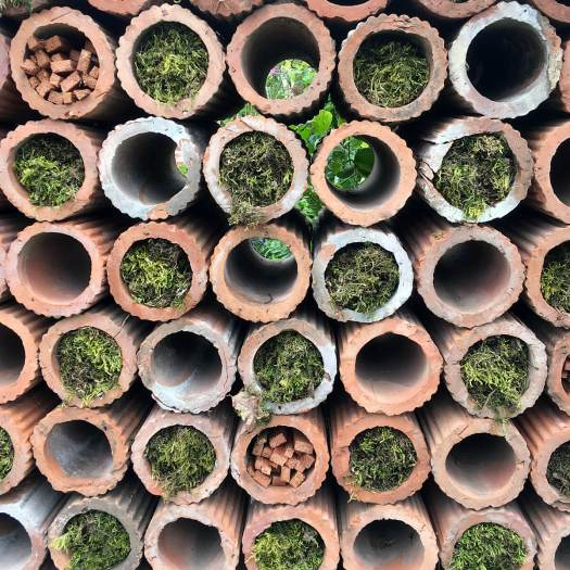 Insect hotel made with terracotta tubes and moss