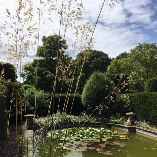 Traditional lily pool at Cothay Manor