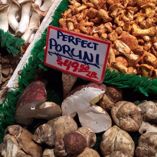 Porcini mushrooms for sale at 49.50 per lb