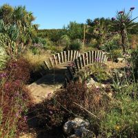 Decorative Arched Footbridge, Desert Wash, East Ruston, Norfolk — Susan Rushton
