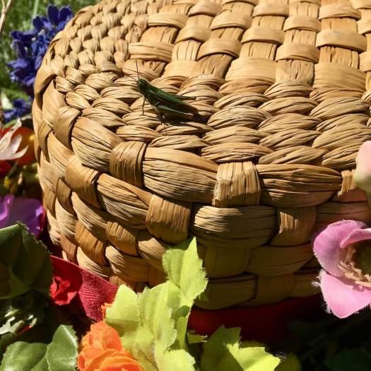Grasshopper on straw hat